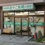 p-yamashina-i
